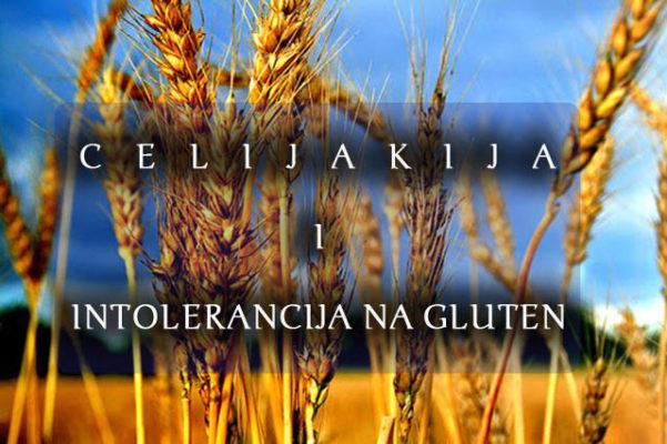 celijaklija_intolerancija_na_gluten_full